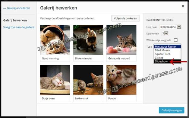 4-galerijbewerkentype-slideshow720449T8